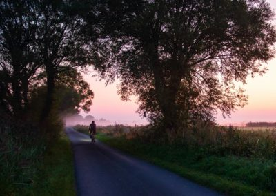 Ground mist and a soft lilac light in the sky on a country lane near Rickney