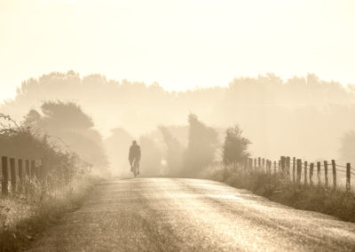 Strong backlight creates a watercolour effect in this image on a quiet sundrenched lane