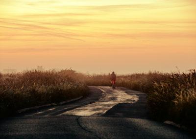 Soft early morning light on the coastal mashes near Pevensey