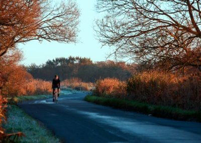 A frosty autumn morning along the marsh road, near Pevensey