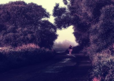 A gentle light and a painterly feel to this raid along a n English country lane , just at dawn