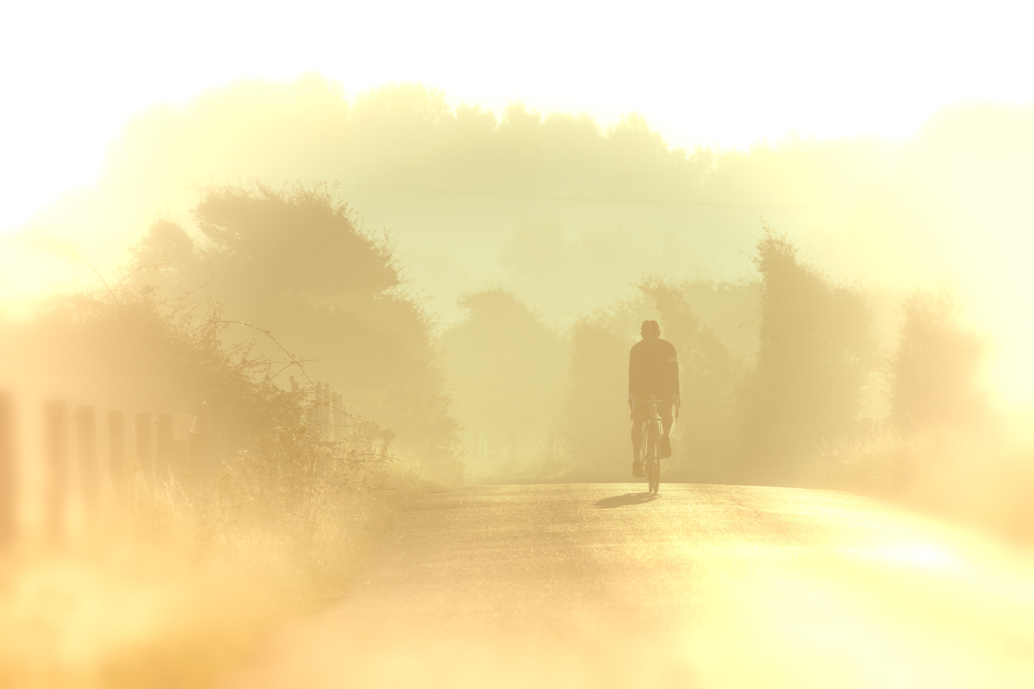 Cycling in Sussex - Cooden