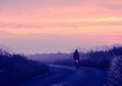 Mists and a soft violet light ov the marshes at dawn