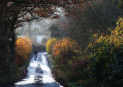 A touch of Arts & Crafts Movement in this image of a lane near Guestling
