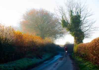 Cold bright December morning, near Boreham, East Sussex