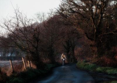 Pale winter sunshine along a lane near Rye