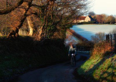 A shaft of early morning winter sunshine along a lane near Winchelsea