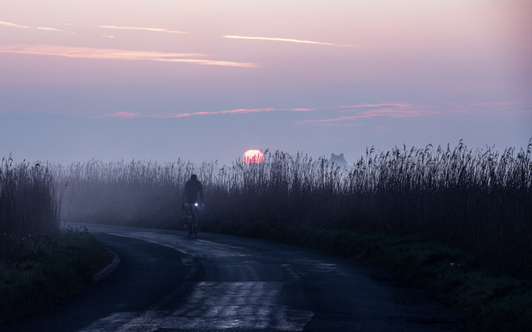 Velvet Sunrise
