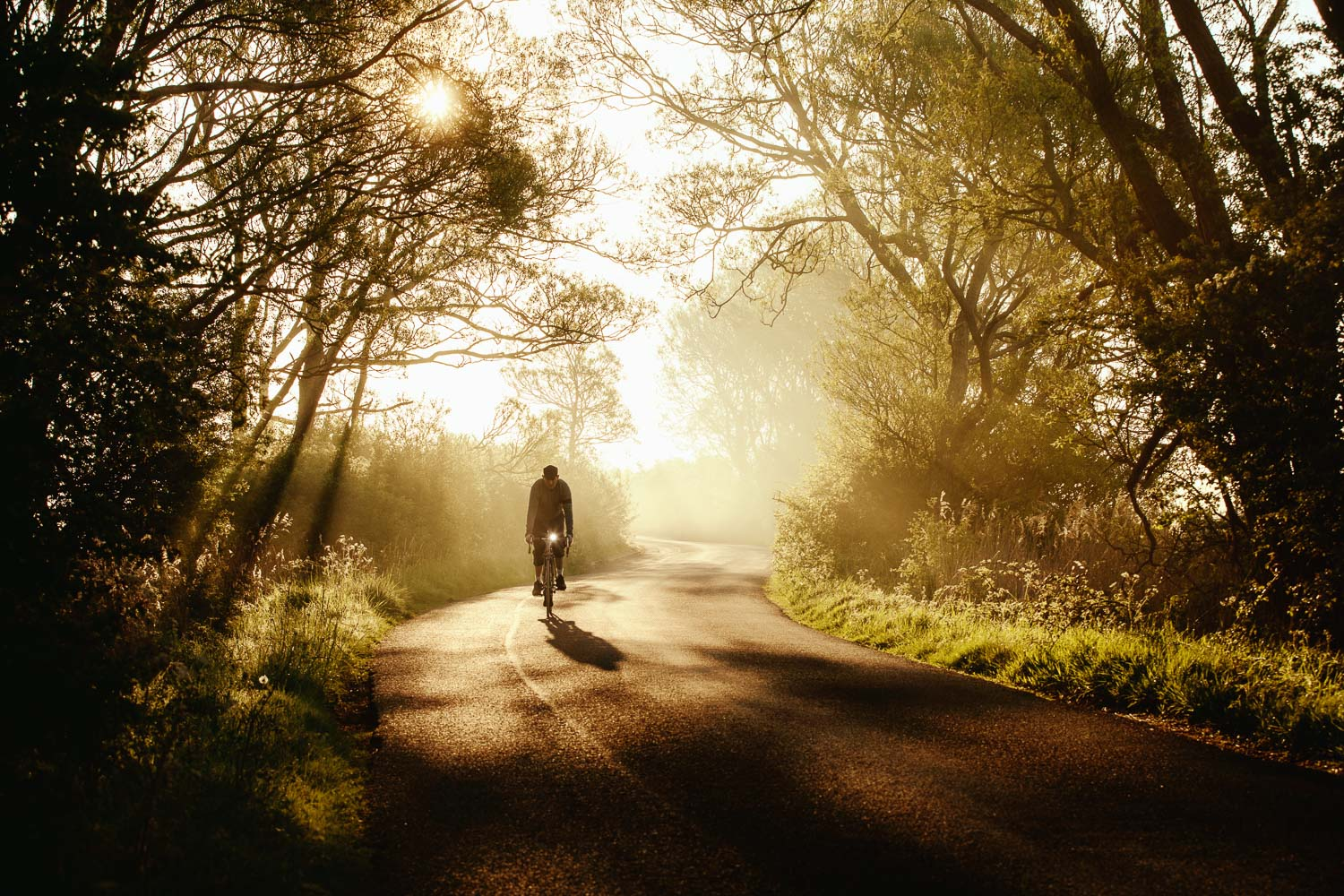 Backlit Cyclist at dawn on English country lane near Pevensey, East Sussex