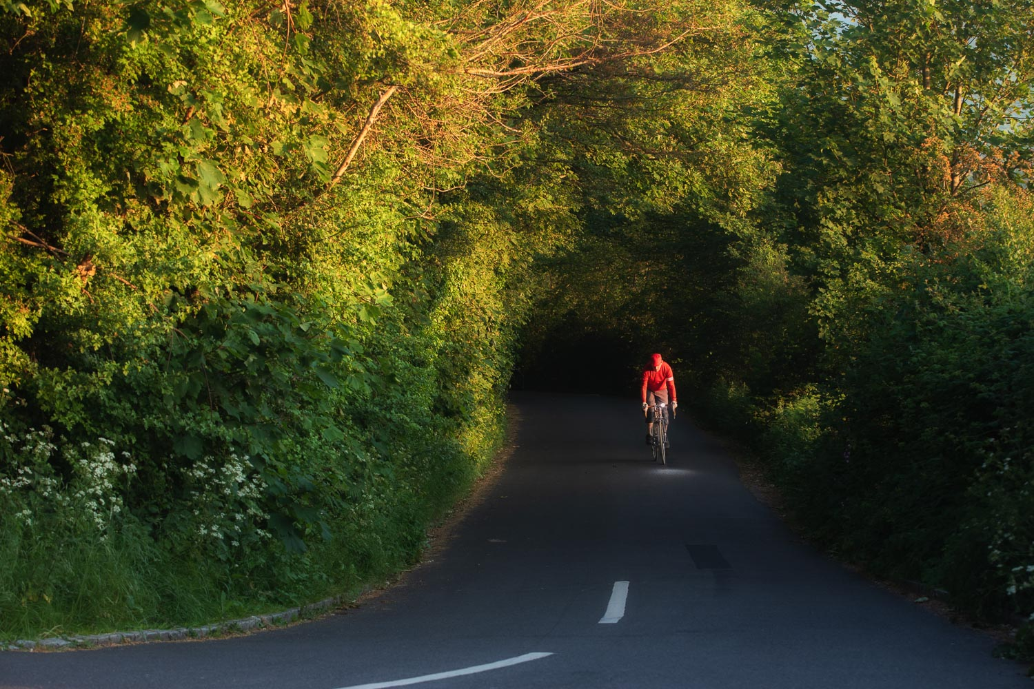 Cycling in Sussex - Wartling