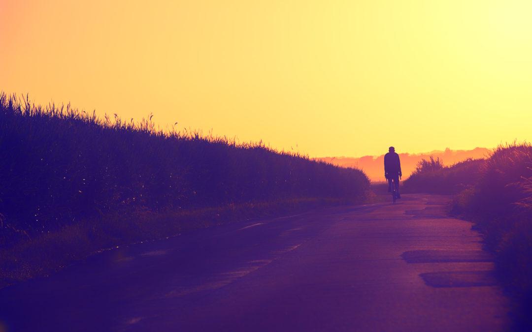 Rider of the Purple Shadows