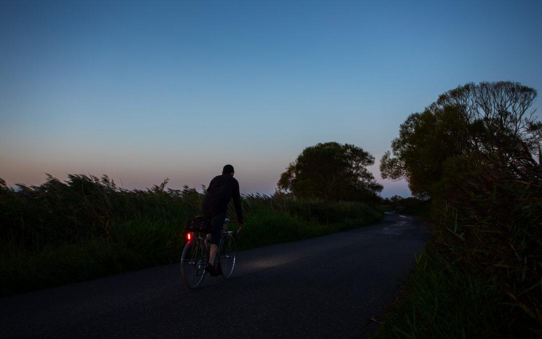 A Lamplit Journey