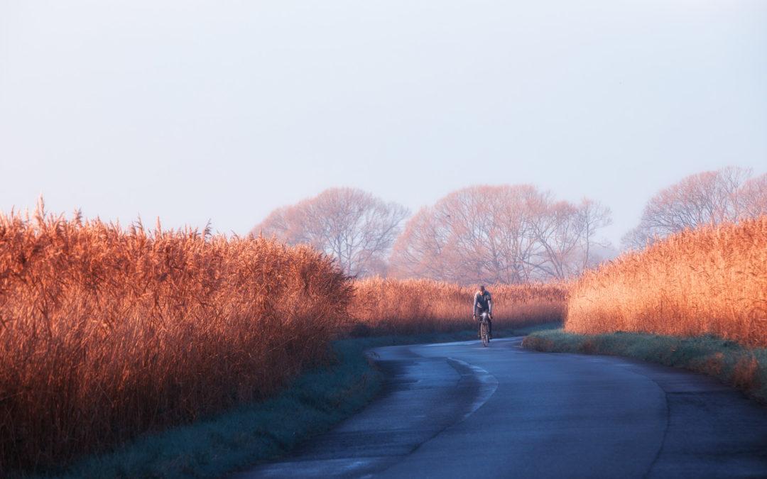 Bright Winter Sunshine, Old Marsh Road, Pevensey