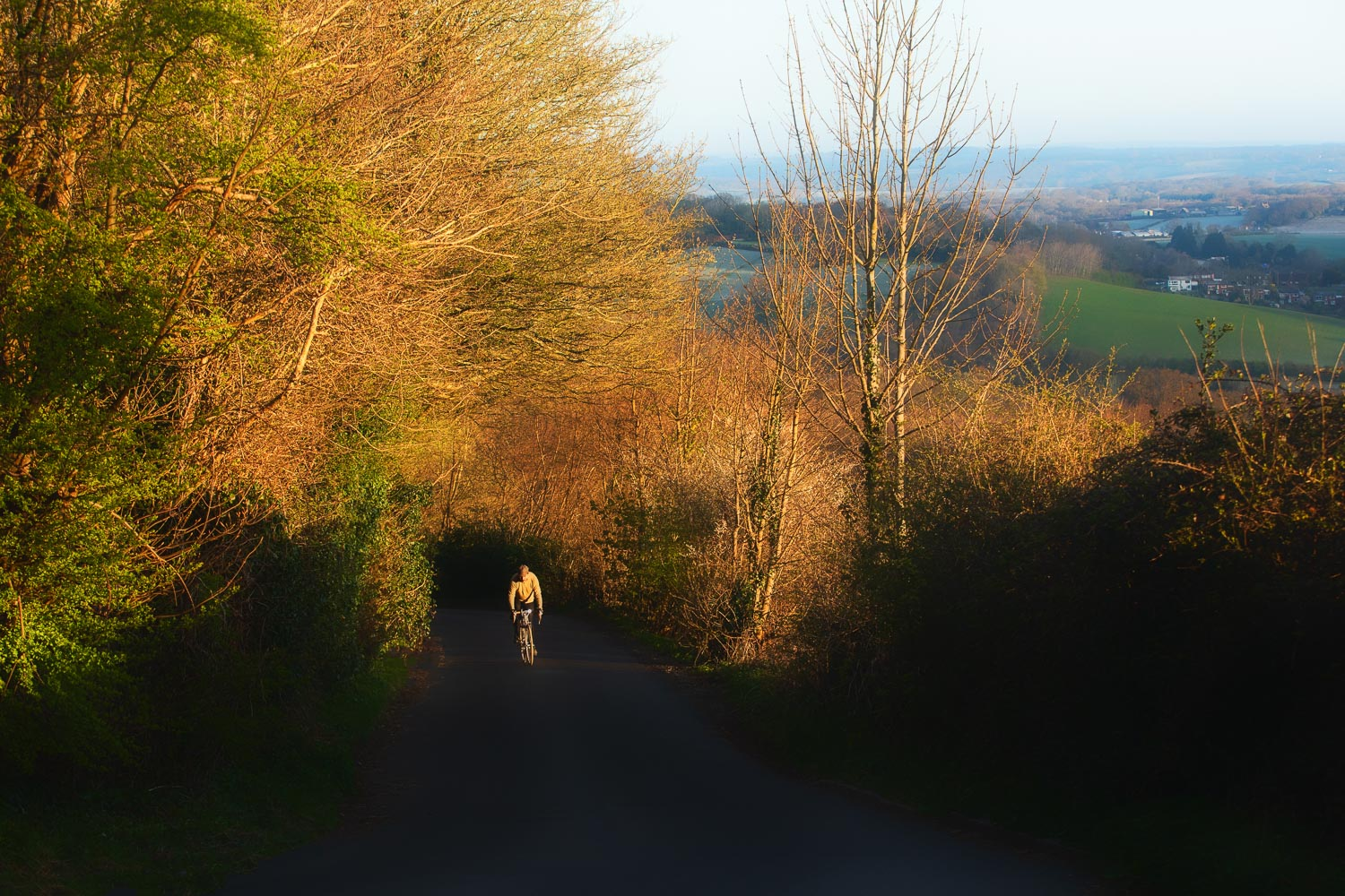 Cyclist emerging into sunshine on leafy country lane