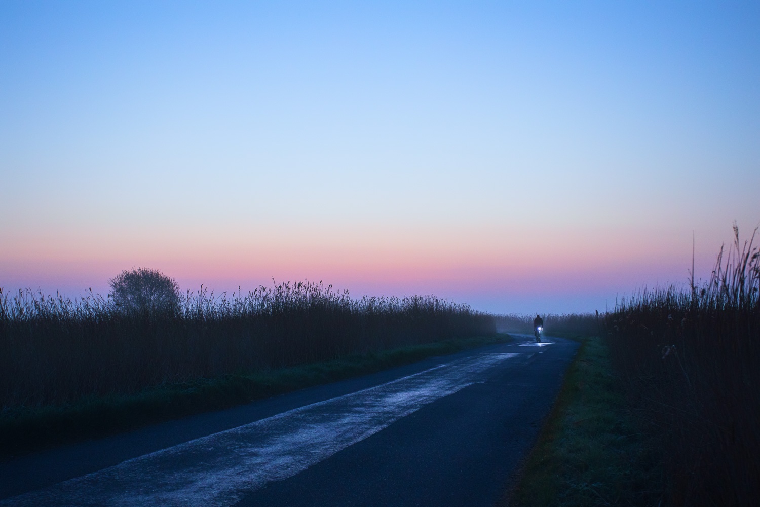 headlamp of cyclist on pretty country road at dawn