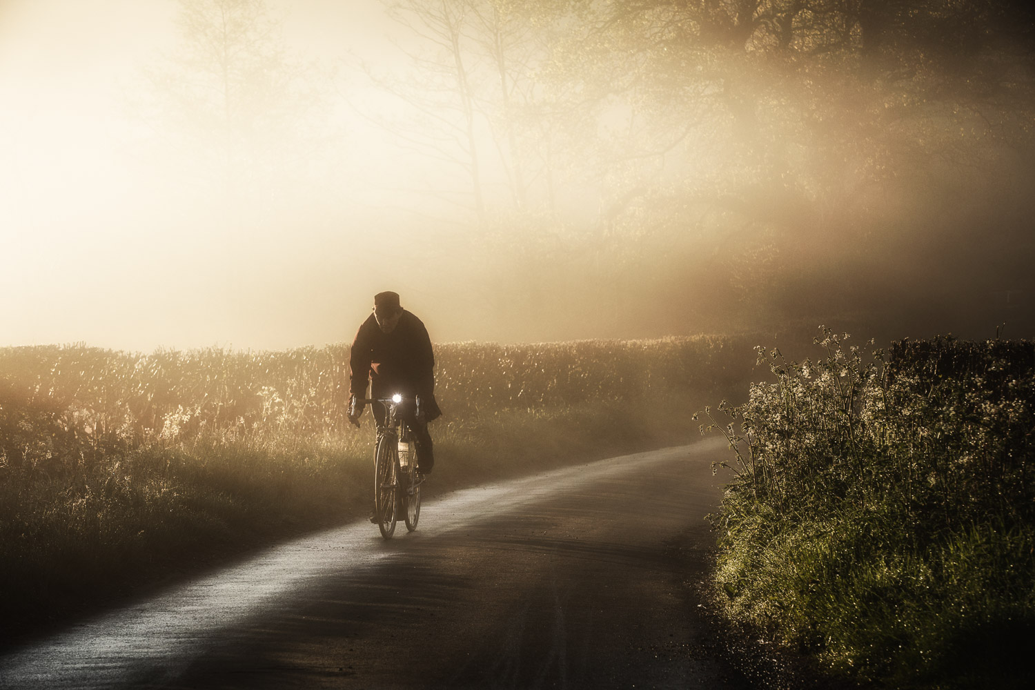 Cyclist pedalling along misty country lane