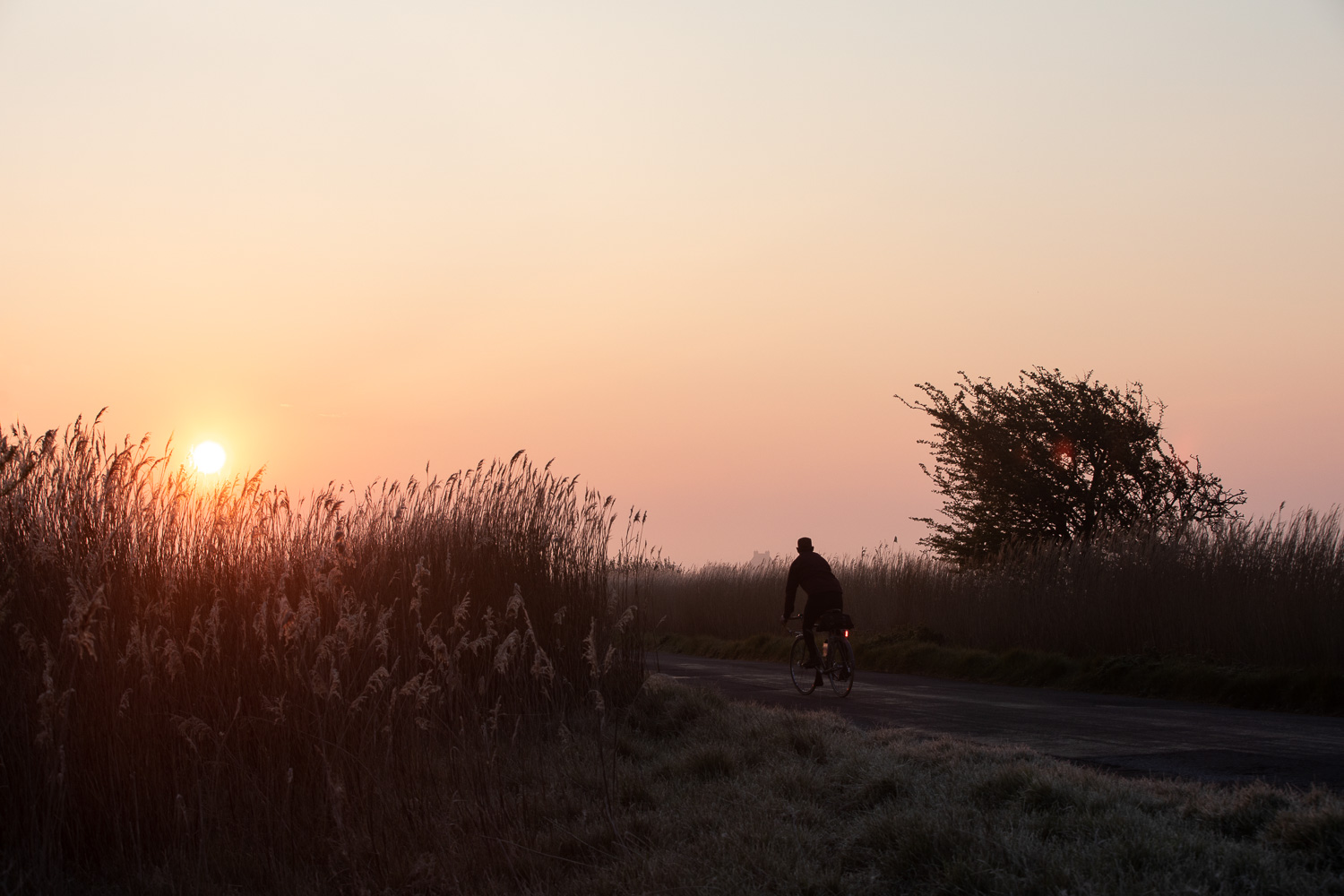 Cyclist riding into sunrise along English country lane