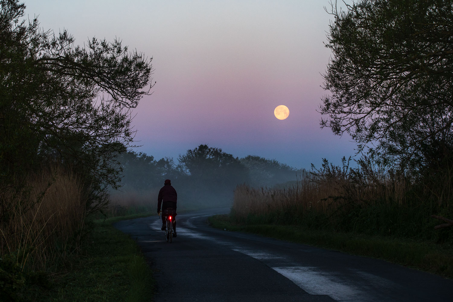 Cyclist on country lane pedalling towards a luminous full moon