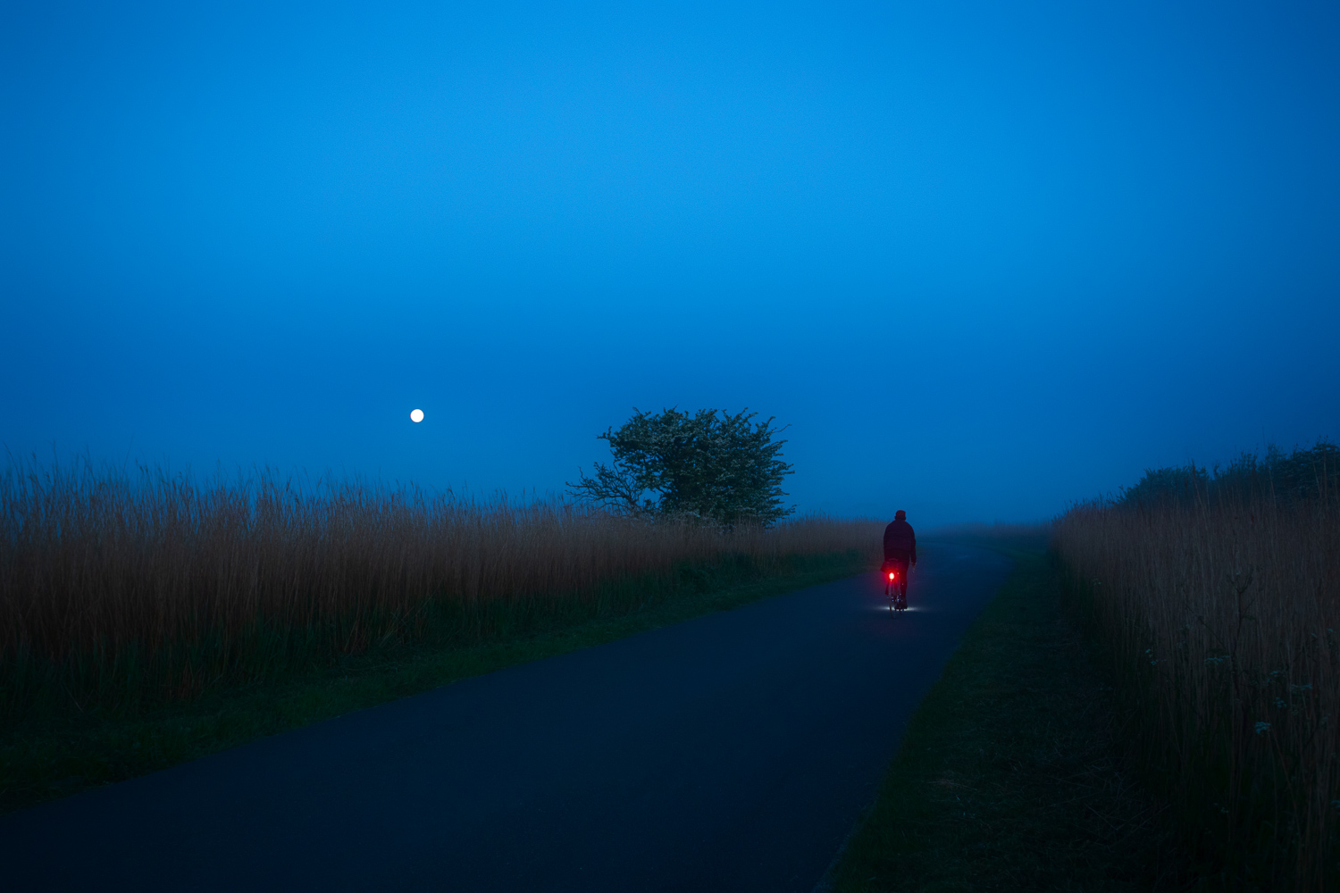 Cyclist pedalling down empty country lane by moonlight