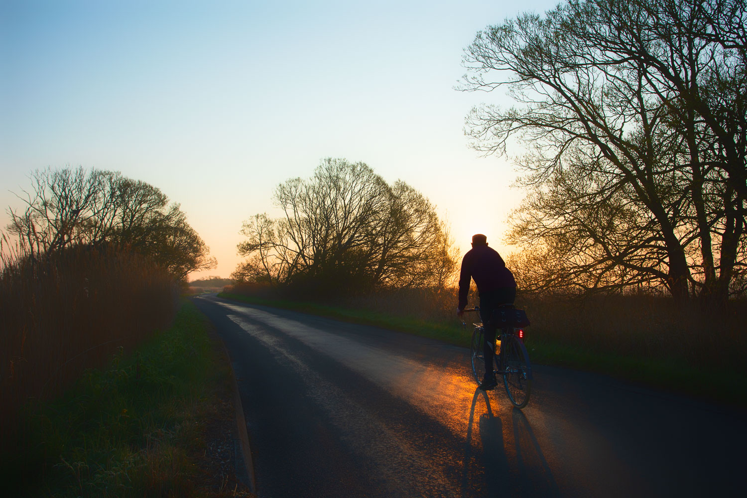 Cyclist pedalling into sunrise on open country road