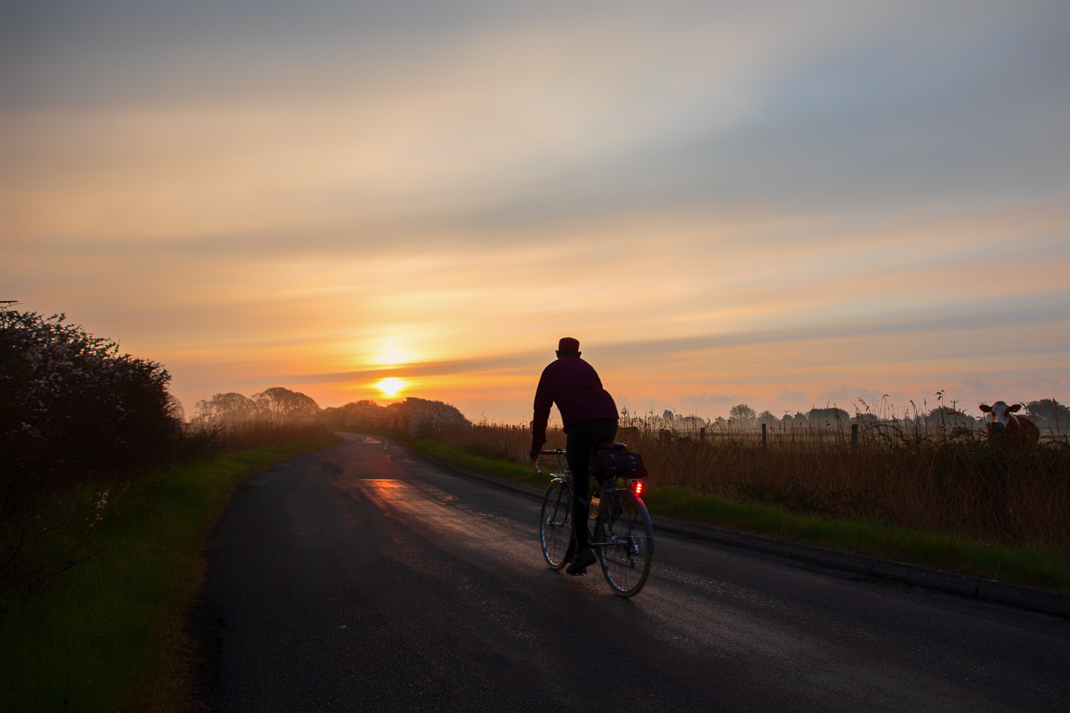 Solitary cyclist pedalling towards rising sun on country lane