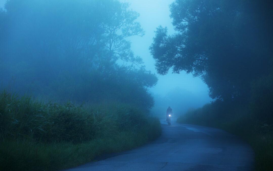 Adventures in The Dark Forest, Sussex