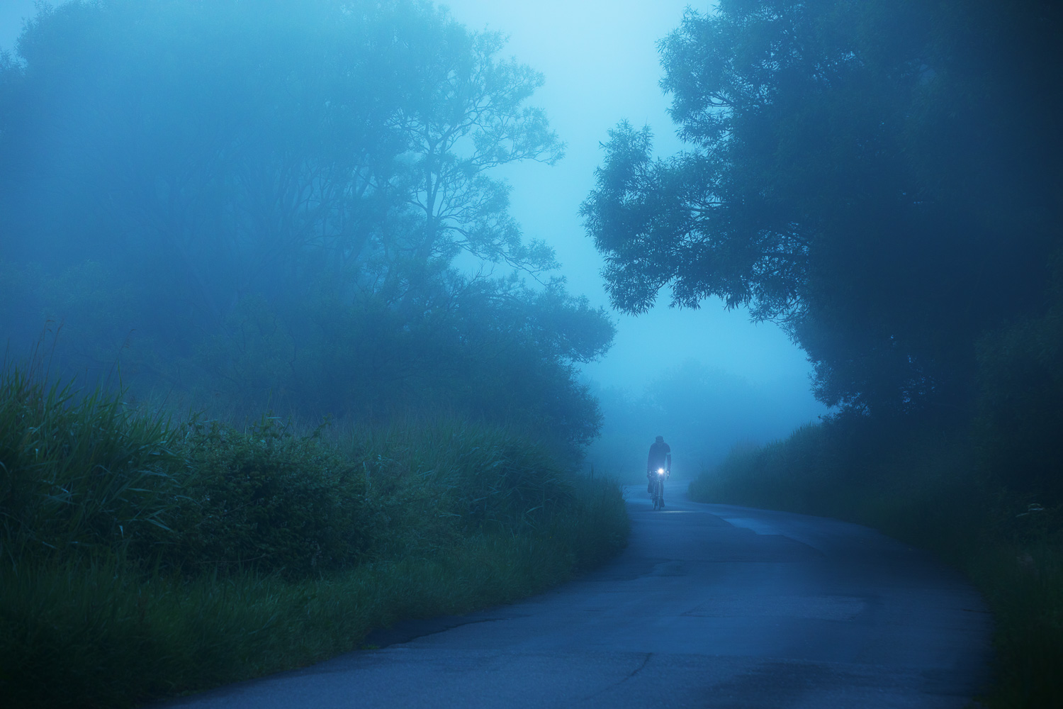 Lone cyclist pedalling along a foggy country lane at night