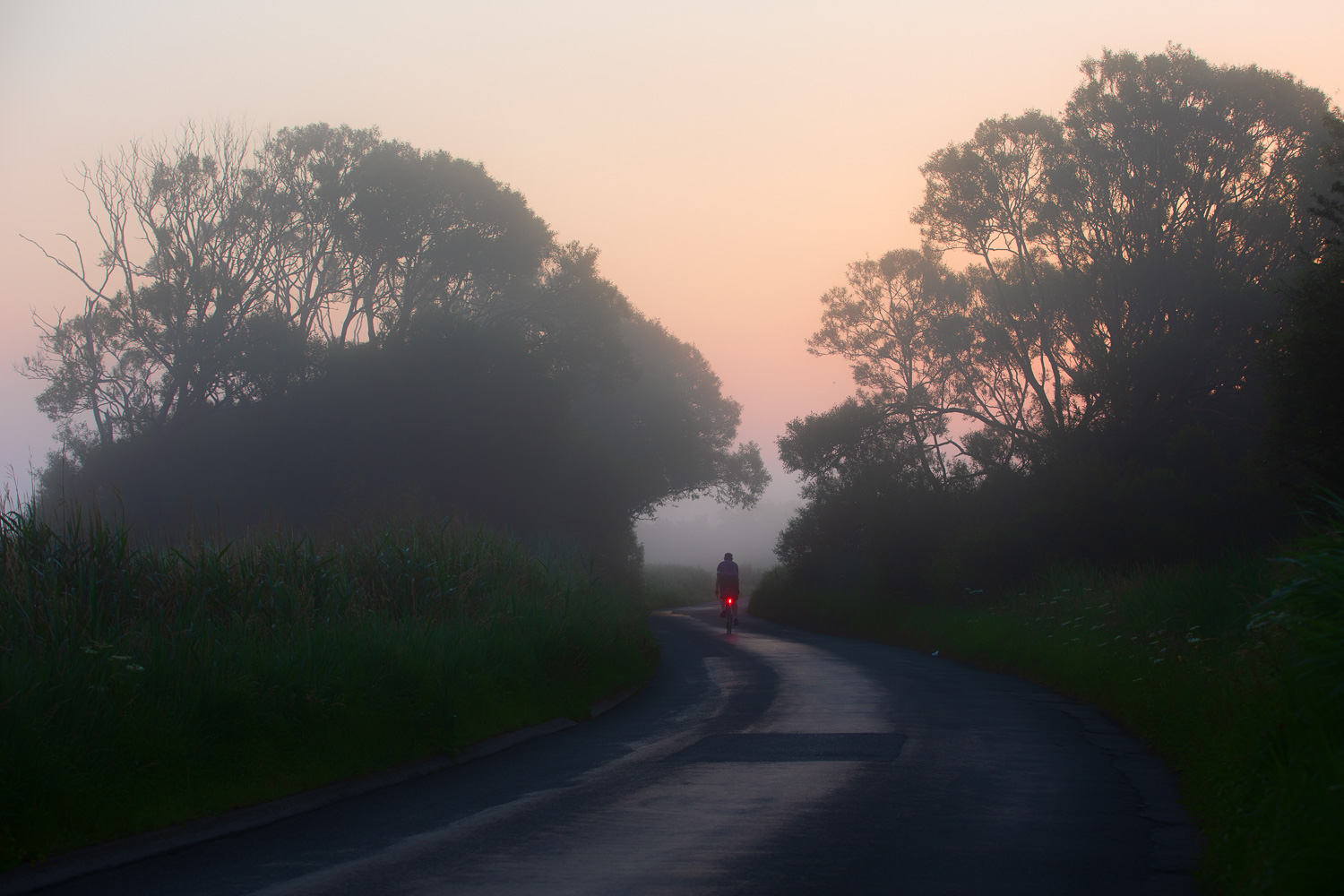 Cyclist with red taillight on misty country lane at dawn